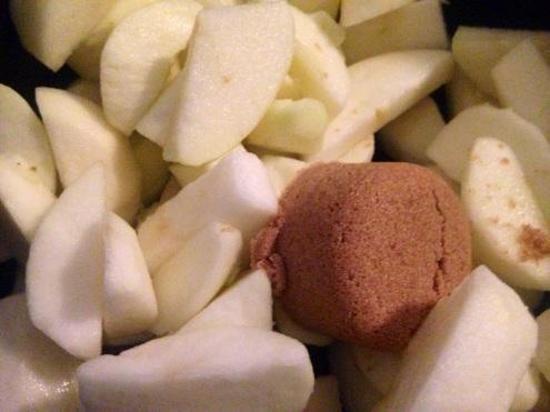 apple_sauce_gluten_free_compote_pommes_sans_gluten_5